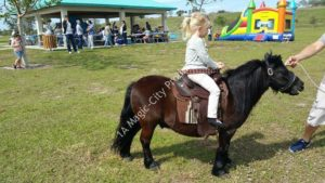 Ponies & Petting Zoo Miami FL 3